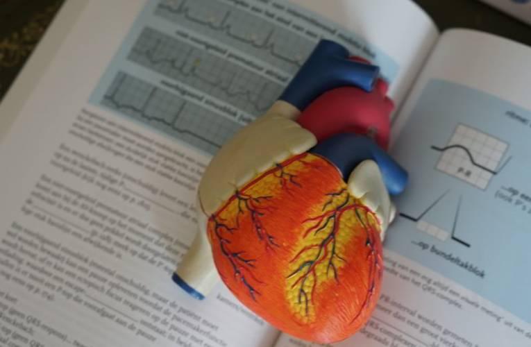 Książki o tematyce medycznej – swobodny dostęp dla każdego specjalisty